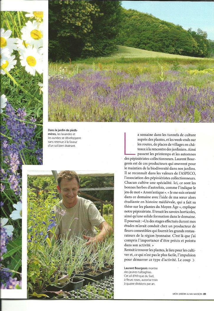 Article mon jardin et ma maison photos et textes