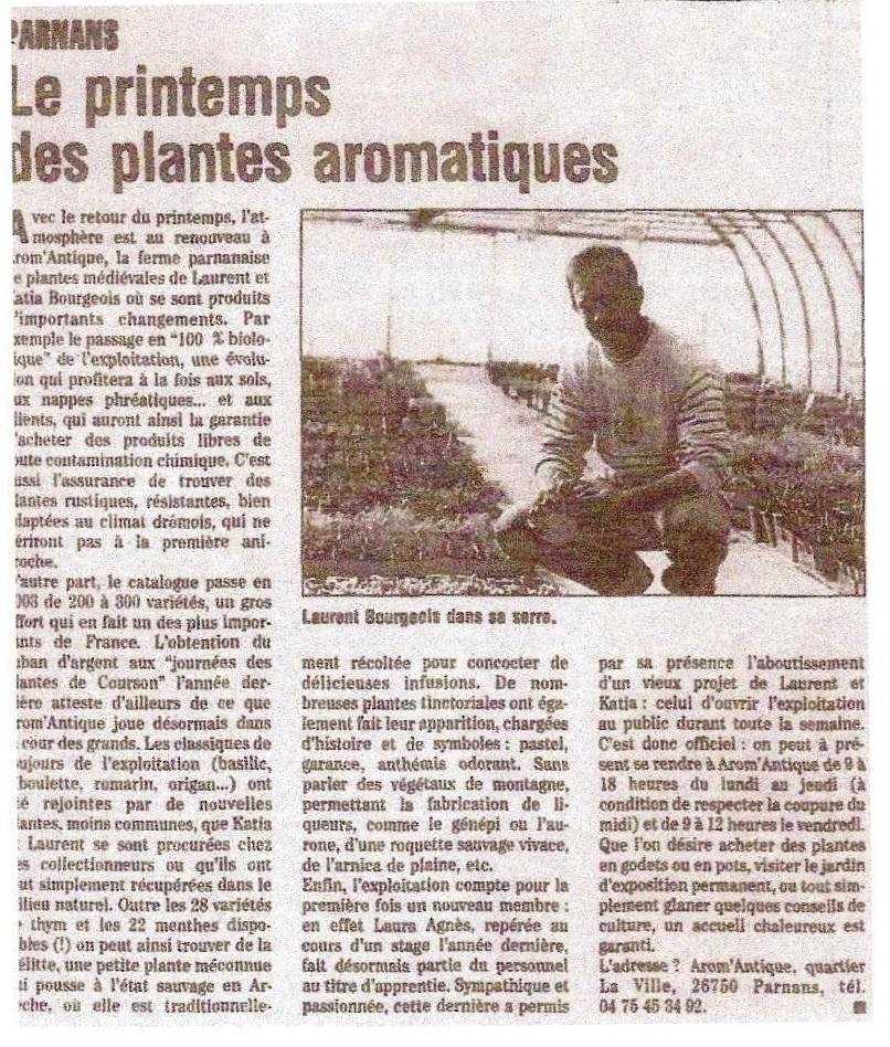 Le printemps des plantes aromatiques