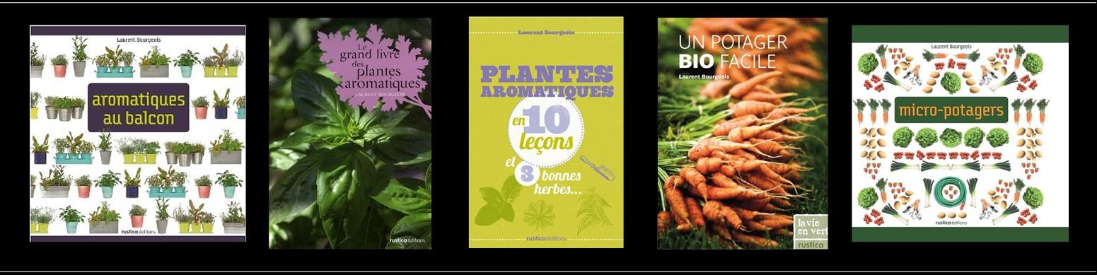 Livres de Laurent Bourgeois