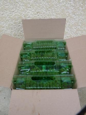 Emballage plantes aromatiques bio